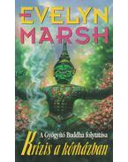 Krízis a kórházban - Evelyn Marsh