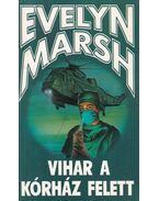 Vihar a kórház felett - Evelyn Marsh