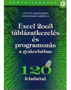 Excel 2003 táblázatkezelés és programozás a gyakorlatban