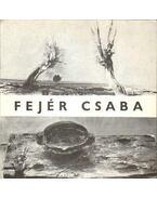 Fejér Csaba festőművész kiállítása (meghívó)
