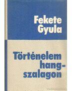 Történelem hangszalagon - Fekete Gyula
