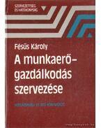 A munkaerőgazdálkodás szervezése - Fésűs Károly