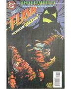 The Flash 107.