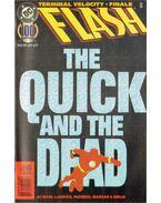 Flash 100.