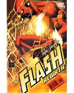 The Flash: Rebirth 1.