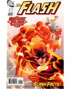 The Flash Secret Files and Origins 2010 1.