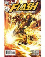 Flash: The Fastest Man Alive 1.