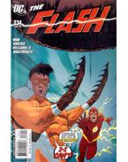 The Flash 234.