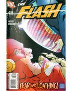The Flash 238.
