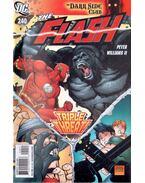 The Flash 240.