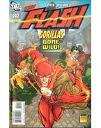 The Flash 242.