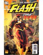 The Flash 243.