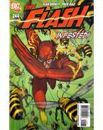 The Flash 244.