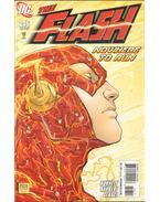 The Flash 246.