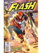The Flash: The Fastest Man Alive 4.