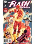 The Flash: Rebirth 6.