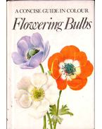 A Concise Guide in Colour Flowering Bulbs