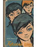 Kékszemű könyv