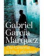 The General in His Labyrinth - Gabriel García Márquez