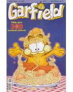 Garfield 2003/5. 161. szám