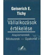 Vállalkozások értékelése - Geiserich E. Tichy