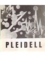 Pleidell János festőművész kiállítása (dedikált) - Genthon István
