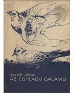 Az egylábú galamb - Hajdók János