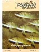 Halászat 1991/4. Tél