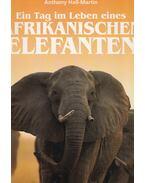 Afrikanischen elefanten - Hall-Martin, Anthony