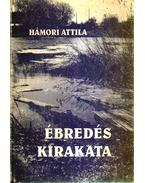 Ébredés kirakata - Hámori Attila
