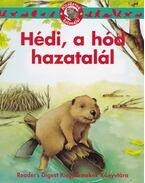 Hédi, a hód hazatalál