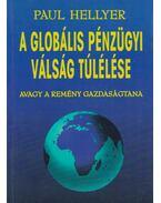 A globális pénzügyi válság túlélése - Hellyer Paul