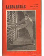 Labdarúgás 1964 (teljes) - Hoffer József