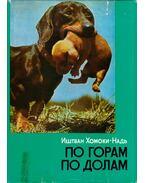 Hegyen-völgyön (orosz) - Homoki-Nagy István