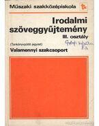 Irodalmi szöveggyűjtemény III. tankönyvpótló jegyzet - Horváth Zsuzsa