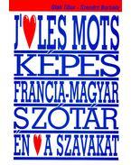 J'aime les mots – Dictionnaire visuel thématique francais-hongrois