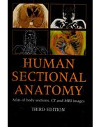 Human Sectional Anatomy – Atlas of Body Sections, CT and MRI Images
