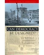 Can Democracy be Designed? - The Politics of Institutional Choice in Conflict-torn Societies