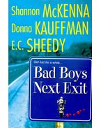 Bad Boys Next Exit – Meltdown, Exposed, Pure Ginger