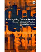 Interrogating Cultural Studies