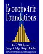 Econometric Foundations with CD ROM