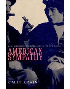 American Sympathy – Men, Friendship, and Literature in the New Nation