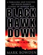 Black Hawk Down - a story of modern war