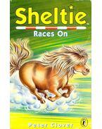 Sheltie Races On