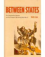 Between States – The Transylvanian Question and the European Idea during World War II