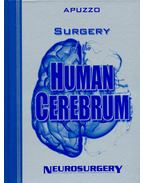 Surgery of the Human Cerebrum