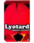 Libidinal Economy