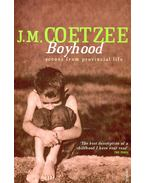 Boyhood – Scenes from Provincial Life