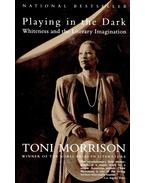 Playing in the Dark / Whiteness and the Literary Imagination