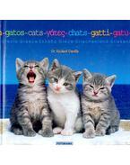 Cats - Gatos - Chats - Gatti - Gatu